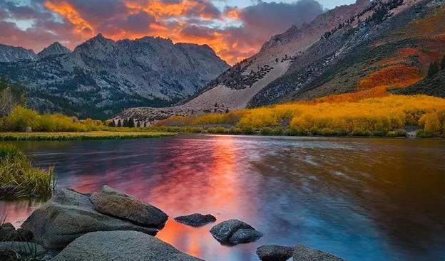 好景 | 说走就走的赏秋之旅,动人的红叶原来有这么多种