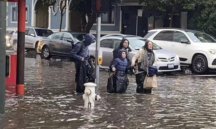 上周大事件|下雨的旧金山也太惨了?!