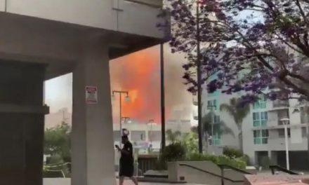 突发!《摩登家庭》喜剧演员Fred Willard逝世!洛杉矶市中心小东京发生火灾并引发爆炸,又一喜剧巨星陨落