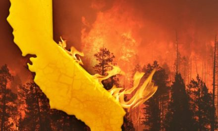 炙烤洛杉矶!森林大火下洛杉矶天空一片鲜红!