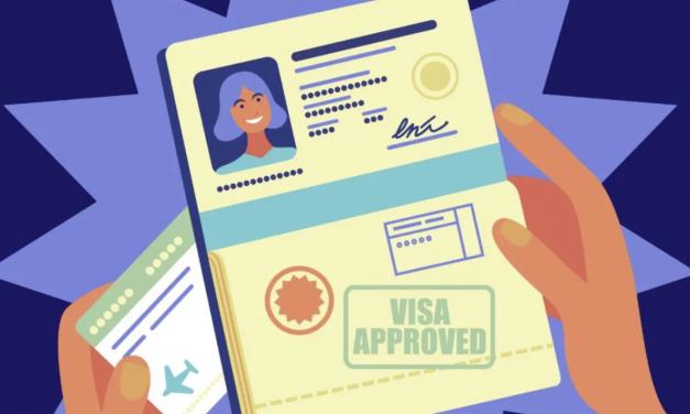 美国签证那么多,你居然只知道OPT和H1B ?