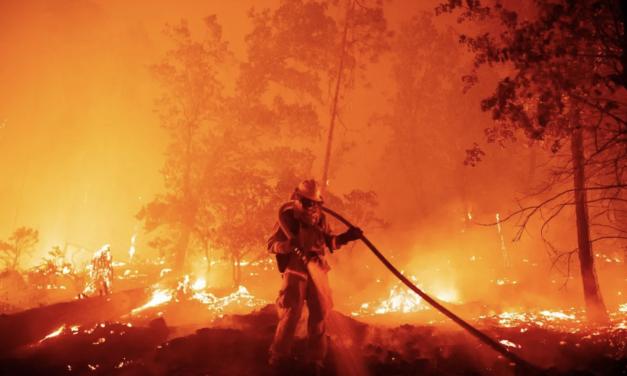 加州山火又双叒叕破纪录,最严重的永远是下一年,全球已经变暖。