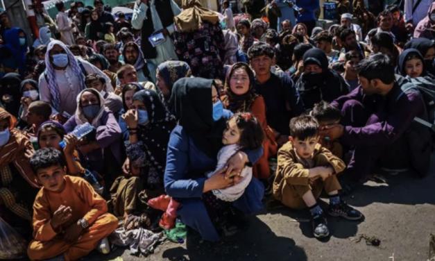 橙县要扩大上限准备接收10万余阿富汗难民,当地居民瞬间炸开锅