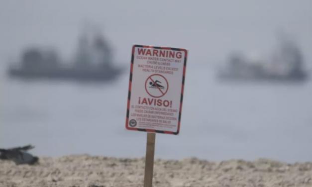 石油泄漏对海洋生物造成了重大污染,超市里的海鲜到底还能不能吃?